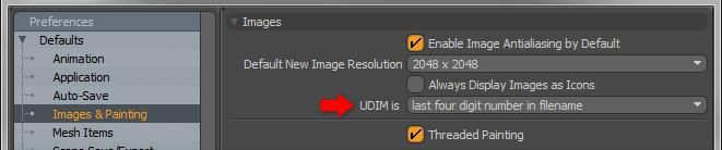 UDIM Workflow